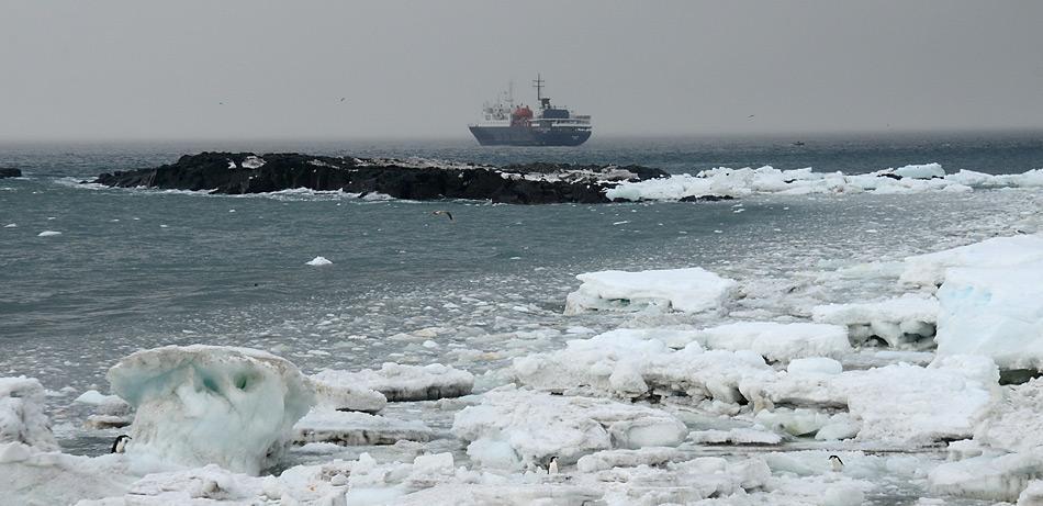 Die MV Ortelius liegt vor dem vereisten Strand von Saunders Island.