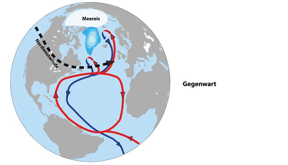 Schematische Darstellung der heutigen Klimabedingungen auf der Nordhalbkugel. In der Gegenwart ist die Ausdehnung des arktischen Meereises sehr viel geringer als in der letzten Eiszeit. Gleichzeitig verschwand der Laurentidische Eisschild als wichtigster Taktgeber für die eiszeitliche Ozeanzirkulation. Das heutige Klima verhält sich in Modellsimulationen deshalb sehr viel robuster gegen graduelle Veränderungen als in den Phasen mittlerer Vereisung und mittlerer Meersspiegelhöhen, in denen es während der letzten Eiszeit die rasanten Temperatursprünge auf der Nordhalbkugel gab. Abbildungen: AWI, Bremerhaven